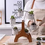 createjia Einfach Weiß Pflanze Töpfe Blumentöpfe mit Saftig Keramik Sukkulenten Töpfe Kreativ Riesenrad Blumentopf