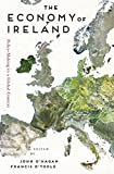 The Economy of Ireland: Policy-Making in a Global Context