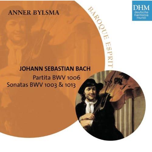 Sonata for Solo Violin No. 2 in A Minor, BWV 1003 (Arr. for Violoncello Piccolo): III. Andante