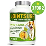 JOINTSURE Young + Active Joint supplements for dogs. Triple-action formula with Green Lipped Mussel & Glucosamine for dog joint care. Helps stiff joints, supports joint structure & maintains mobility.