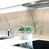 Küchenrückwand Sand Gras Premium Hart-PVC 0,4 mm selbstklebend - Direkt auf die Fliesen, Größe:220 x 60 cm