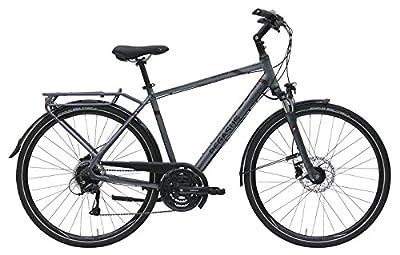 Herren Fahrrad 28 Zoll - Pegasus Opero SL - 24 Gänge Kettenschaltung Herrenrahmen - platinum grau matt