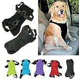 XCSSKG - Cinturón de Seguridad para Perro, Gato o Mascota, Talla M (Cuello: 35 cm – 45 cm, Pecho 48 cm – 58 cm)