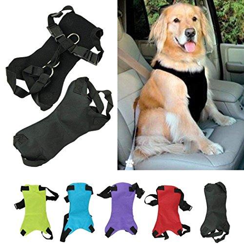 XCSSKG - Cinturón de Seguridad para Perro, Gato o Mascota, Talla M (Cuello: 35 cm - 45 cm, Pecho 48 cm - 58 cm)