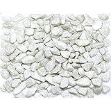 Zierkies WEIß Dekosteine für Minigabionen oder Dekoschalen 9-13mm 1 Beutel 500gr