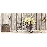 Amazonit Bicicletta Stampe E Quadri Arte Casa E Cucina