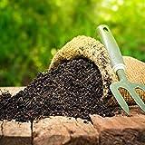 SAPRETAILER Earth Magic Enriched Organic Calcium Magnesium Sulphur Rich Potting Soil Mix