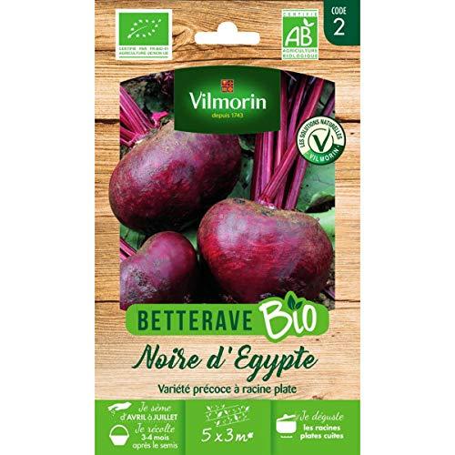 Sachet graines Betterave Noire d'Egypte Bio - Beta vulgaris