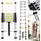Bigapple Aluminium Folding Step Ladder Portable and Compact 15-Step Telescopic 5.2m(17ft) Foladable for Household and Outdoor Purpose, Multicolor, 150Kg Loading