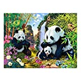 Camisin Full Drill DIY Diamond Embroidery Lovely Panda Family Diamond Painting Cross Stitch Rhinestone Decoration