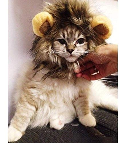 tes Löwenmähne Haustier Katzenhut Perücke Kostüm Cosplay Gefüllter Plüsch mit Ohren vorhanden ()