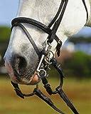 Windsor Equestrian Pelham redondeos par Negro negro