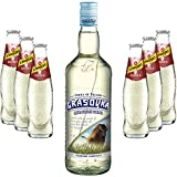 Moscow Mule Set - Grasovka Vodka 1L (40% Vol) + 6x Schweppes Ginger Beer 200ml