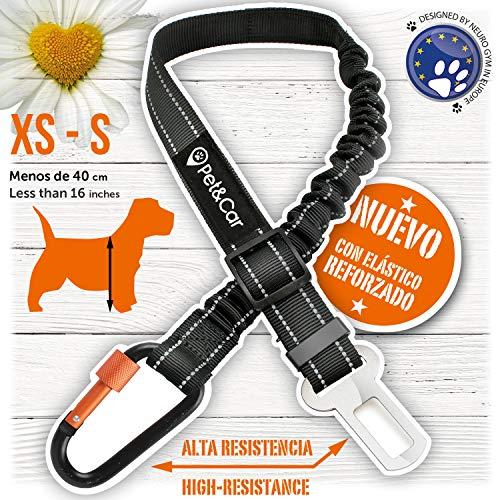 PET & CAR Cinturón Seguridad Extensible arnés Perro