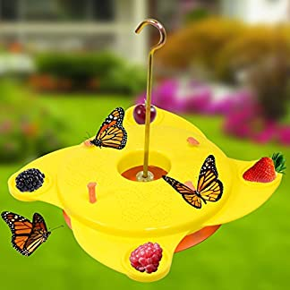Garden Butterfly Feeder Station Brightly Coloured Yellow Insect Feeding Platform Attract Nectar Blooming Flowers Garden Butterfly Feeder Station Brightly Coloured Yellow Insect Feeding Platform Attract Nectar Blooming Flowers 51aLLDaVoIL
