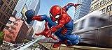 AG Design - Vlies Tapeten - Spider-Man Marvel - Fototapete - Riesiges Foto Poster - 202 x 90 cm - FTDNH 5367