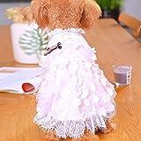 Hund Kleid Hund Puppy Kleid Pet Cat Tutu Rock Prinzessin Hochzeit Kleid Hund Chihuahua Kleidung Braut Kostüm