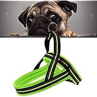 M. 60 * Pecute Guinzaglio per Cani,Guinzaglio per cani reg Pet Dogs A7 riflettente poliestere Chest Harness guinzaglio del Traction cani di grossa taglia Sicurezza Catene Fune collare formato 2.5