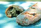 Brot Backmischung – Tomato Olive Bread im Weckglas 640g - 2