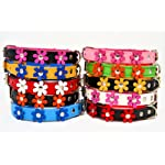 """ZOOLESZCZ LEATHER DOG COLLAR FLOWER Designer DAISY COLOUR PADDED Handmade RED with BLACK lining and WHITE FLOWER (10"""" 1.2cm wide/ 25cm long) 8"""