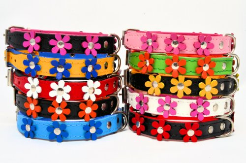 """ZOOLESZCZ LEATHER DOG COLLAR FLOWER Designer DAISY COLOUR PADDED Handmade RED with BLACK lining and WHITE FLOWER (10"""" 1.2cm wide/ 25cm long) 3"""