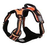 Lalawow Hundegeschirr Mit Griff Kein Xiehen Leine D-Ring Reflektierend (L (27.56-34.65inch), Orange)