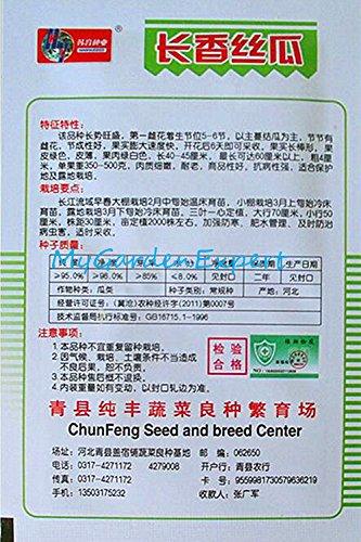 1pack long luffa Graines de légumes Luffa cylindrica légumes vert Graines jardin bricolage Plantes d'emballage d'origine