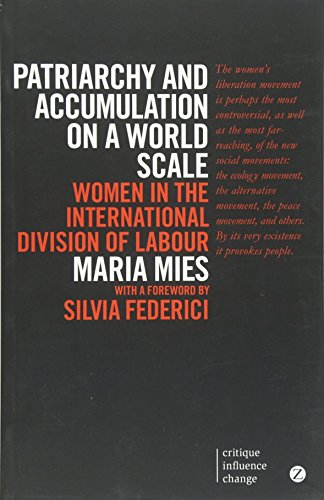 Patriarchy and Accumulation on a World Scale: Women in the International Division of Labour (Critique Influence Change) por Maria Mies