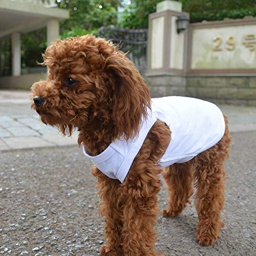 longlongpet 2019 Haustier-Kostüm, Welpen, Hundekleidung, Leere T-Shirts für große, mittelgroße und kleine Hunde, 100% Baumwolle, Klassische Haustierkleidung Welpen, Hundeweste, 18 (Pudel Shirt Kostüm)