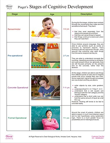 dbios-piagets-stages-of-cognitive-development-higher-education-wall-chart-poster