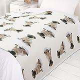 Dreamscene, Caldo copriletto Soft Puppy Dog. Morbida Coperta di Pile per Divano, Multicolore, con Cuccioli di Cane. 120x 150cm