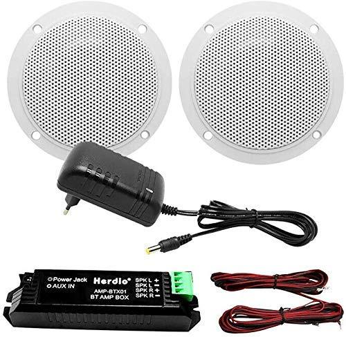 Herdio Bluetooth Deckenlautsprecher Kit Badezimmer Bluetooth Verstärker wasserabweisend Deckenleuchte Lautsprecher - 2 Way -