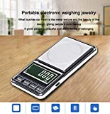 Digital Personal Nutrition Scale, Pocket Size, High Precision Digital Jewelry Pocket Scale 600G/0.1g