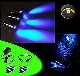 creative lights - Licht & Design Aquarium Mondlicht dimmbar, LED 6-Fach Spot schwenkbar - Komplettset inkl. Netzteil und Dimmer