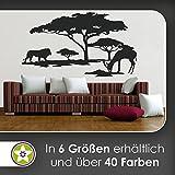 KIWISTAR Afrika Motiv Löwe u. Antilope Wandtattoo in 6 Größen - Wandaufkleber Wall Sticker