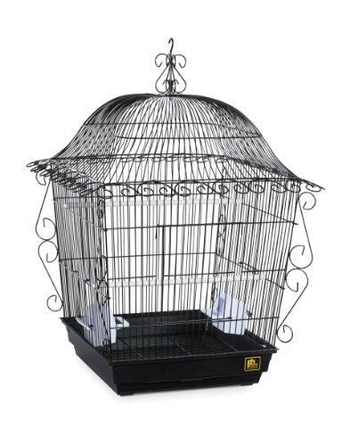 Prevue Pet Products Jumbo Rankenwerk Vogelkäfig 220BLK schwarz, 18von 18von 25