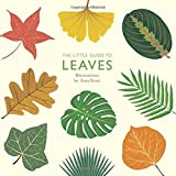 #8: The Little Guide to Leaves (Little Guides)