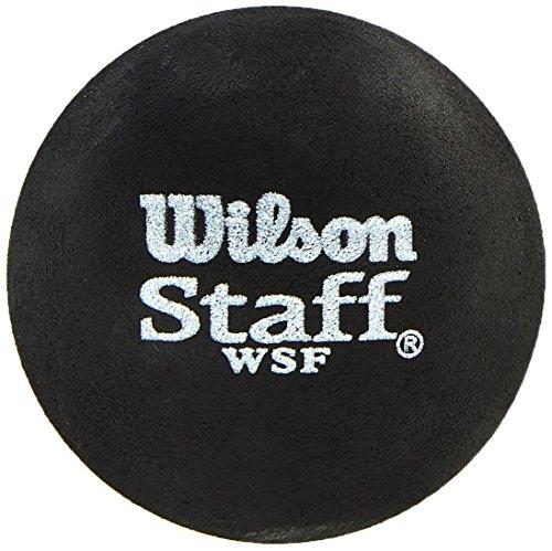 Wilson Squash-Ball, 2 Stück,2er Pack, Schnell, Profi, Schwarz (Blauer Punkt) Staff Premium Single Blue Dot, WRT617500