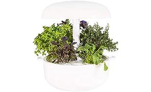 Plantui SG6-W Smart Garden, Bianco, 29x29x37 cm