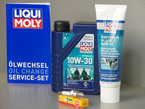 Kit di manutenzione per Honda BF 2.0 2.3, olio per motore fuoribordo, olio per cambio, candela, manuale di manutenzione (lingua italiana non garantita)