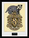 Harry Potter Hufflepuff Gerahmtes Bild Mehrfarbig