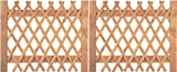 Unbekannt Tür für Jägerzaun Scherenzaun B300 x H120 cm