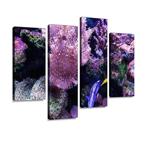 haiilone Clownfish Nemo Leinwandbild, klassisch, Digitaldruck, Holzrahmen, Kunstwerk, Heimgalerie, verpackt, Dekoration, Geschenk, 4 Teile, Multi7, 4ps -