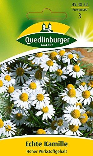 Kräutersamen - Echte Kamille Bodegold von Quedlinburger Saatgut