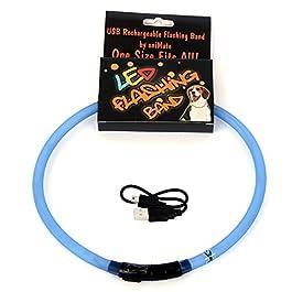 Animatepets 30842.0 Collare a LED Ricaricabile con USB, 70 cm, Blu