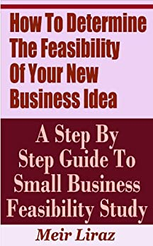 how to conduct a feasibility study for a new business