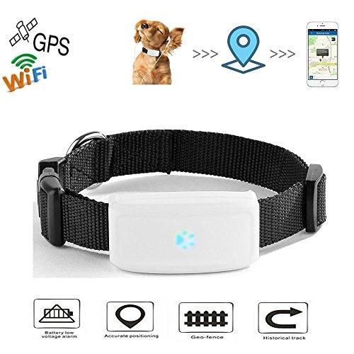 TKSTAR Pet GPS Tracker con Collar, Mini Impermeable GPS Tracking para Perros Cats Puppy, Wifi GPS Anti Lost Dog / Cats Entrenamiento en Tiempo Real con APP Gratuita y Plataforma Web TK911