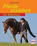 Pferde erziehen (Die Reitschule)