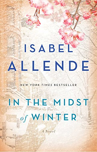 In the Midst of Winter: A Novel (English Edition)