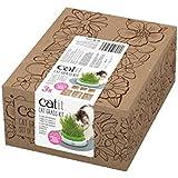catit Katzengras 3er Pack - Cat Grass Kit